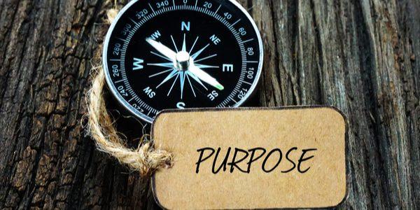 spurpose